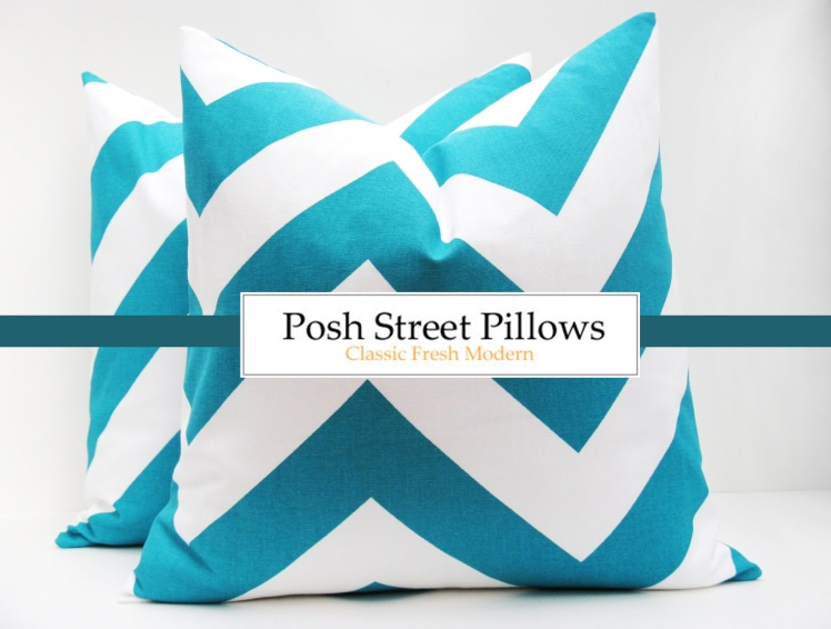 Posh Street Pillows