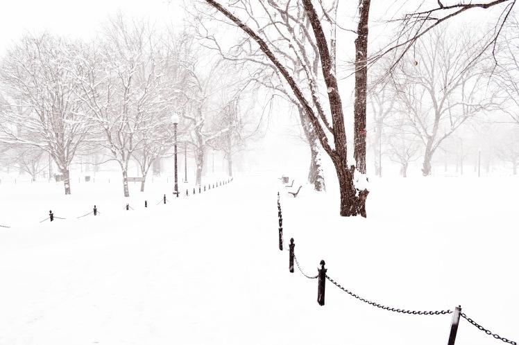 Boston Garden in the snow