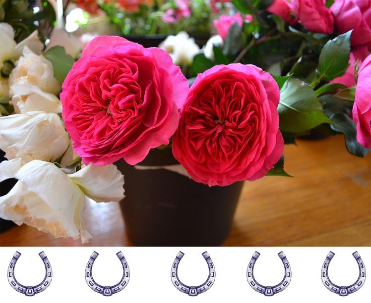 Derby florals