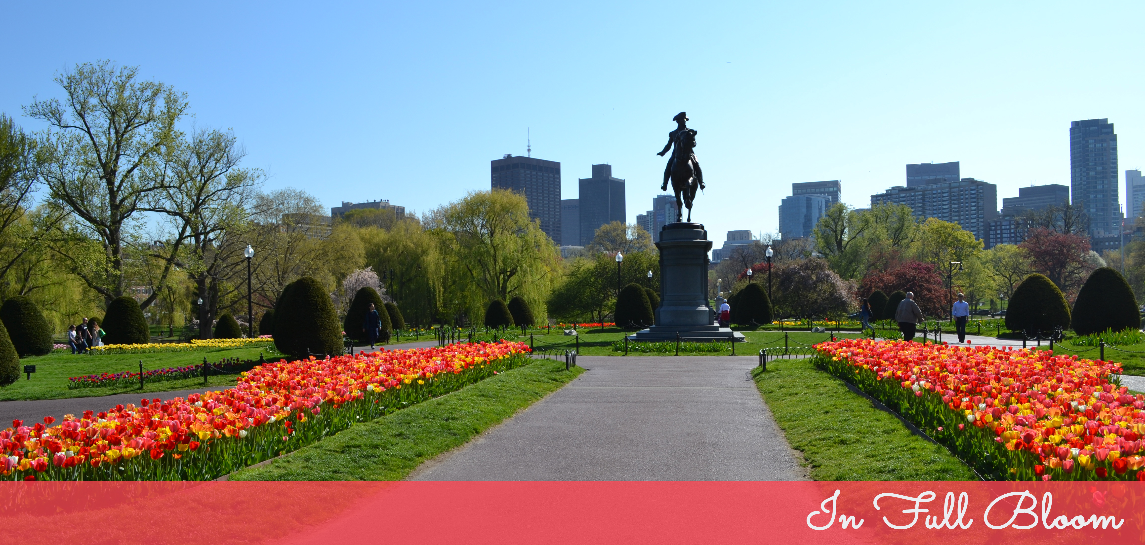 Boston In Bloom Pop Circumstance Guidebook For Beautiful Living