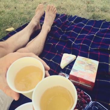 summer picnic Charles River