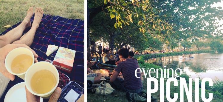 picnic on the Esplanade