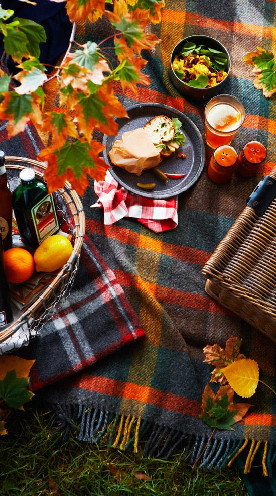 fall picnic on a plaid blanket