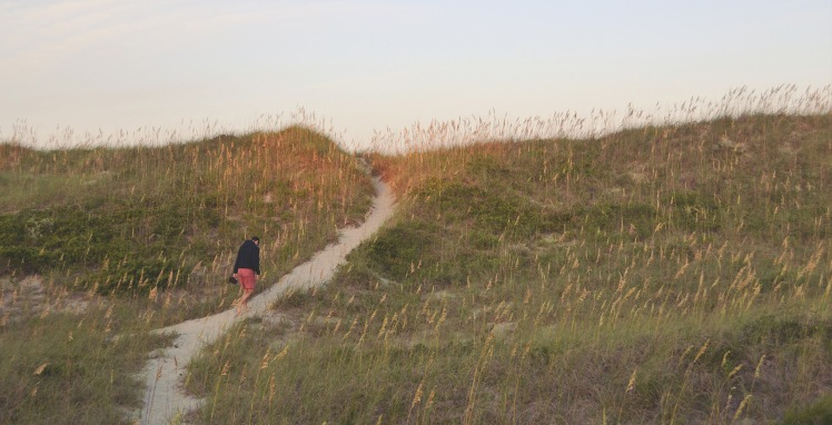 Outer Banks beach dunes