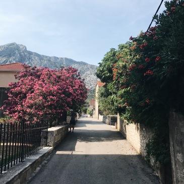 A Day in Orebic Croatia