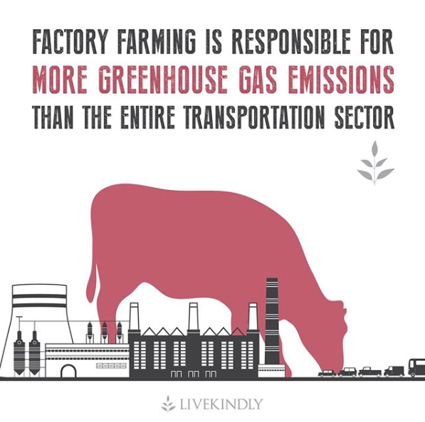 factory_farming_greenhouse_gas